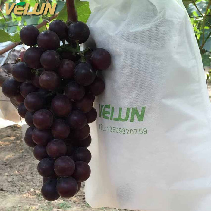 50pcs Non-woven Grape Protection Bags For Fruit Vegetable Against Insect Pouch